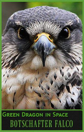 Botschafter Falco