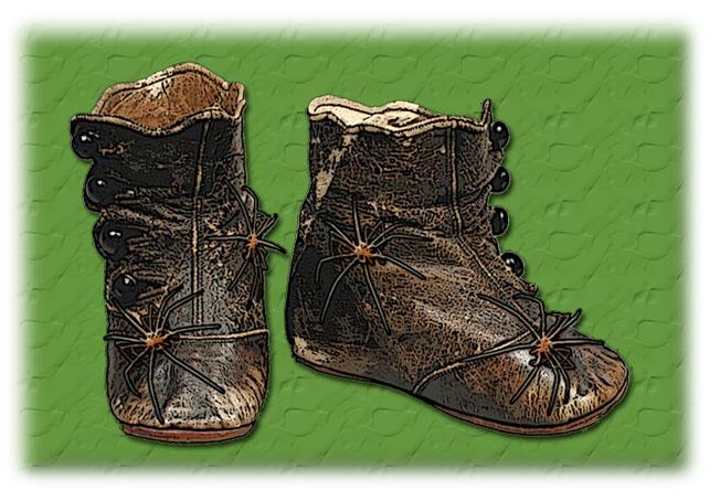 Stiefel der Wasserspinnen