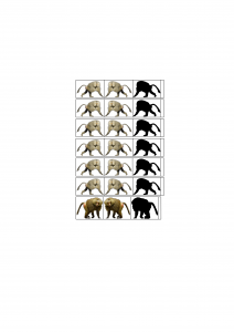 Klettaffen